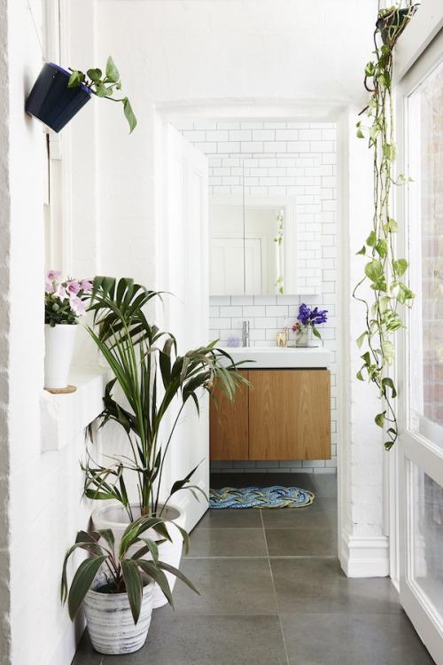 natural modern indoor garden bathroom palm tree bohemian washroom powder room free standing udner mounted vessel sink vanity shop room dieas slate tiles airy white shop room ideas subway tiles